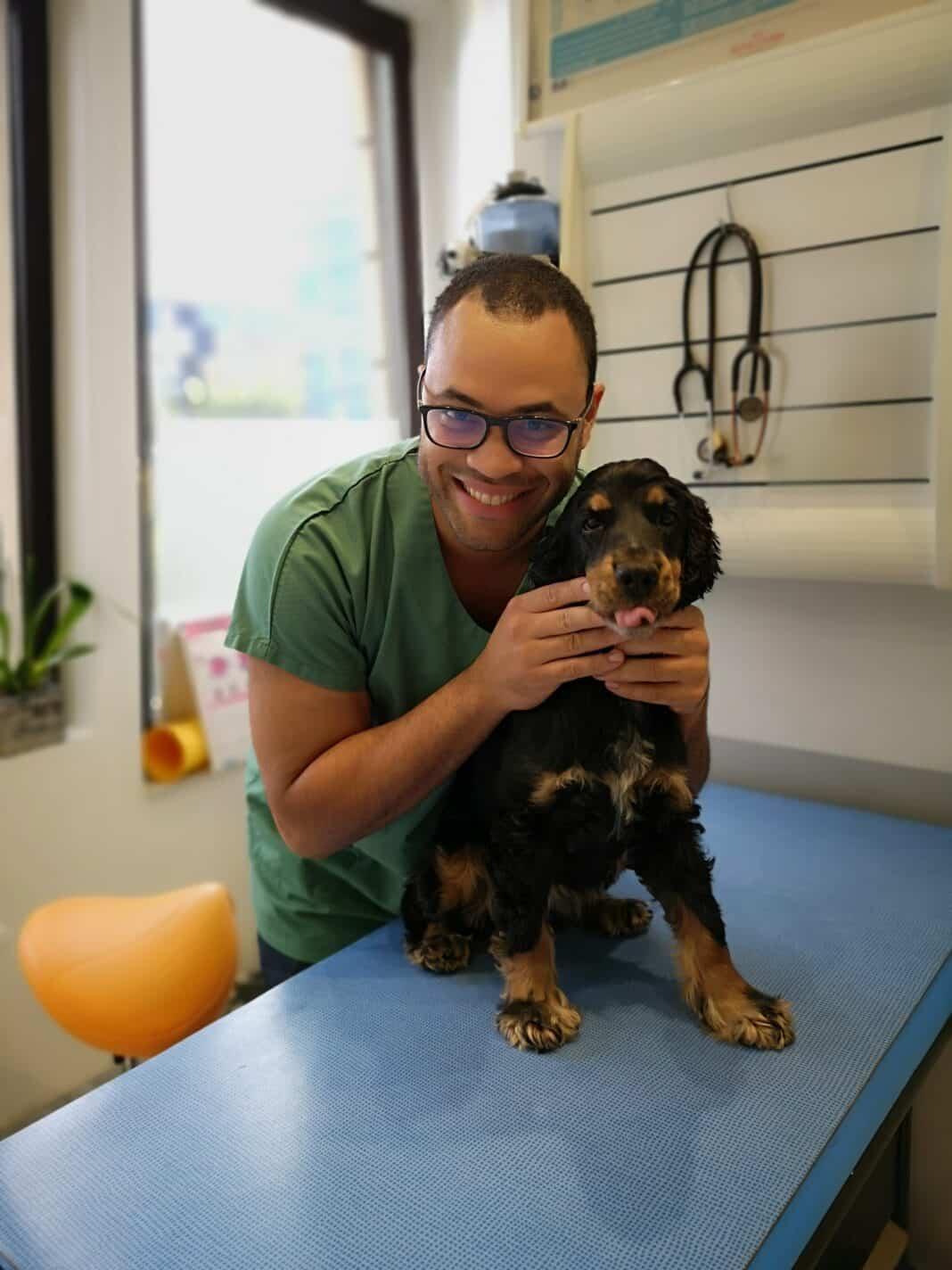 ostéopathie pour animaux