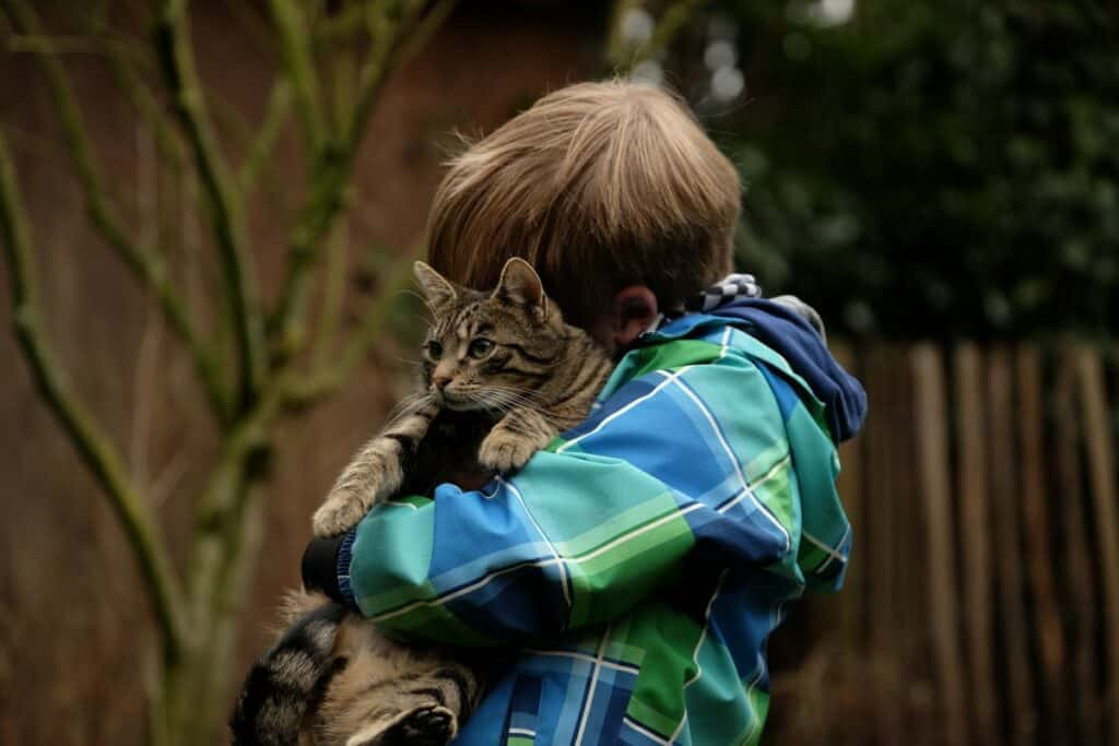 Les maladies du cœur chez le chien et le chat