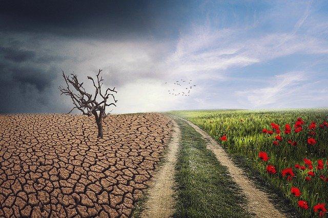 L'attribut alt de cette image est vide, son nom de fichier est changement-climatique.jpg.