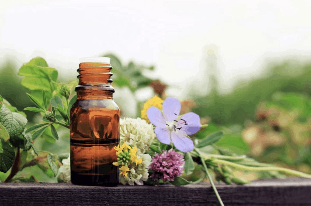 naturopathie ADNL