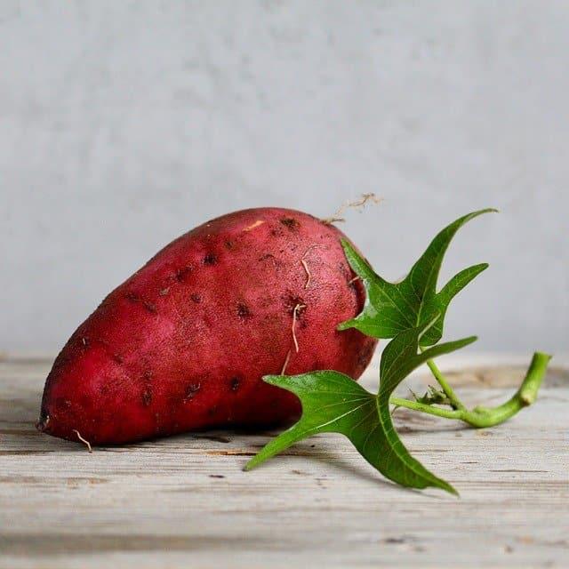 Gratin d'aubergine et patate douce
